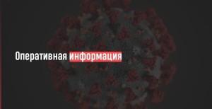 Зафиксировано 65 случаев заболевания коронавирусом.