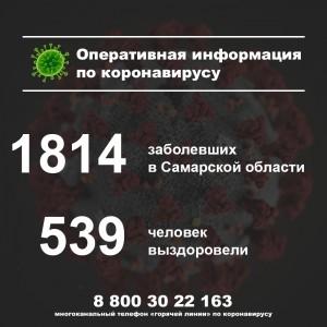 За сутки в Самарском регионе подтверждены 74 новых случая коронавируса