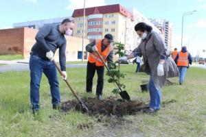 В Тольятти дан старт акции по озеленению города