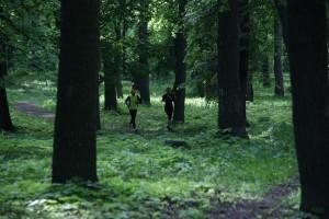 В Самарской области с сегодняшнего дня запретили ходить в лес