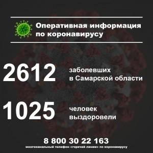 Названы районы Самарской области, где нашли новых заболевших коронавирусом