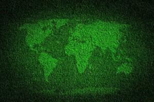Поволжский банк Сбербанка приглашает на благотворительную онлайн-викторину, посвященную Дню эколога