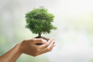 Филиал «Самарский» ПАО «Т Плюс» стал лауреатом ежегодного экологического конкурса «ЭкоЛидер - 2019».