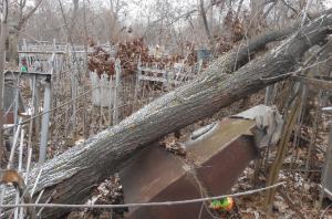 В Самаре плохо содержали Безымянское кладбище
