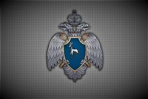 При падении самолета в Самарской области погибли два пилота