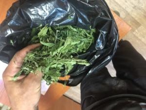 В Самарской области сотрудники полиции задержали подозреваемого в хранении наркотиков