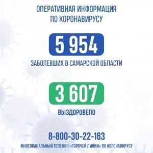 Всего в регионе зафиксировано 5954 случая коронавируса. Скончались 64 человека.