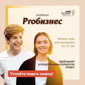 В Самарском регионе стартует бесплатный курс Академии PROбизнес для молодежи 14-17 лет