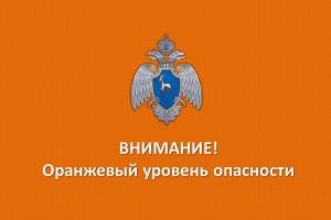 В лесах Самарской области повышен риск пожаров