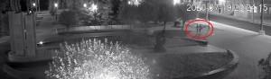 Полиция Самары разыскивает подозреваемых в вандализме на площади Памяти