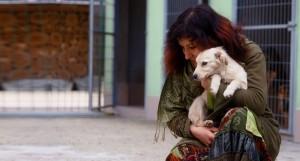 """Ко Дню бездомных животных стартовал проект Уютный приют"""""""