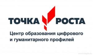 В Сызрани откроются сразу пять центров цифрового и гуманитарного профилей «Точка роста», один из них в школе №5.