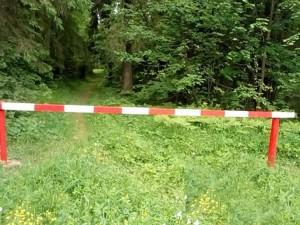 Нарушение правил пожарной безопасности в лесах в условиях особого противопожарного режима влечет наложение административного штрафа.