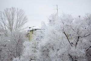Предстоящая зима с вероятностью в 90% будет суровой
