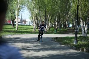"""В парке Гагарина в Самаре появился контейнер-дерево для сбора """"Добрых крышечек"""""""