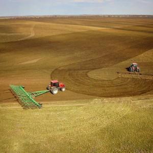 Министр сельского хозяйства и продовольствия региона Николай Абашин отметил, что темп уборочной кампании этого года гораздо выше аналогичного периода прошлого.