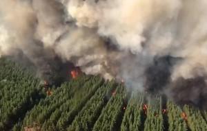 Всего в регионе действуют четыре ландшафтных пожара.