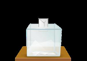 Самарские наблюдатели заявили, что выборы проходят при максимальной прозрачности