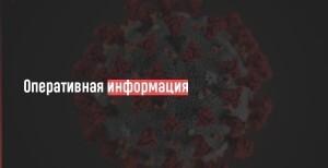 Всего в регионе зафиксировано 10187 случаев коронавируса.Выздоровели почти 80% пациентов - 7888 человек.