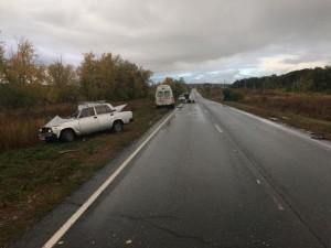 Водитель в Самарской области врезался в корову
