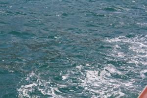 В Крыму построят первый в России опреснитель воды