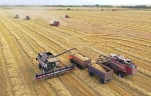 Это позволит использовать более урожайные сорта в земледелии, говорится в докладе Росгидромета.