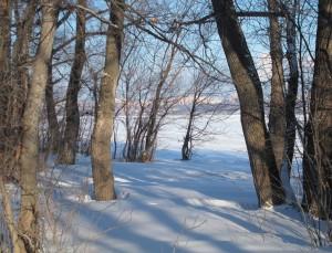 Синоптики обещают жителям Самарской области теплую зиму