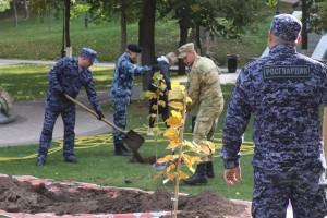 Самарские Росгвардейцы высадили деревья в рамках Всероссийской акции «Лес Победы»