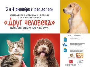 100 кошек и 50 собак из приютов Самары совершенно бесплатно можно будет забрать домой прямо с выставки. Все животные обработаны, привиты и очень хотят обрести дом и хозяев.
