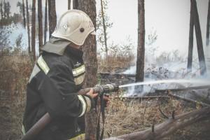 По данным МЧС, в регионе действуют три ландшафтных пожара.