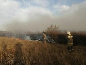 Возгорание в Цимлянском районе локализовано на площади 347 га.