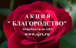 В Самарской области стартовала Акция Благородство - 2020