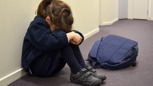 По версии следствия, мужчина совершил насильственные действия сексуального характера в отношении девочки, находясь с ней в одном из школьных классов.