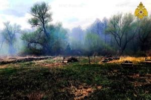 При повышенном уровне пожарной опасности возрастает риск природных пожаров.