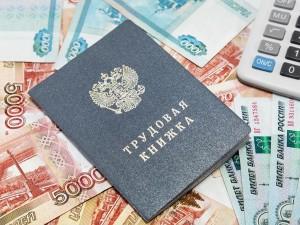 Согласно обращению сотрудников НИИ, фиктивным образом были трудоустроены 5 человек, в том числе супруга директора СОНИИР, в результате было похищено не менее 10 млн рублей.