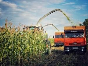 Работников сельского хозяйства с праздником поздравил Губернатор Самарской области Дмитрий Азаров