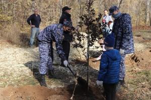 В общей сложности стражи правопорядка вместе с другими жителями города высадили порядка 80 деревьев – яблонь, каштанов, дубов – и около 250 кустарников.