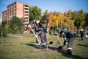 Аллея вместо пустыря: сотрудники КНПЗ высадили деревья в Куйбышевском районе