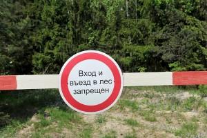 Нарушение правил пожарной безопасности в лесах в условиях особого противопожарного режима, влечет наложение административного штрафа.