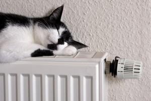 Подача теплоэнергии организована уже в 10111 многоэтажек из 10250.