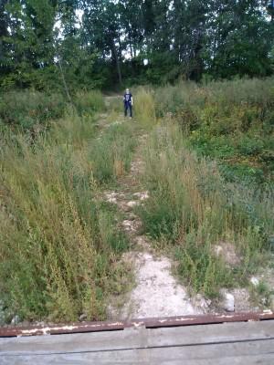 В Самарской области продлен запрет на пребывание в лесах до конца октября