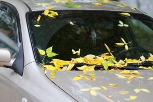 МВД предлагает запретить ездить на летней резине зимой