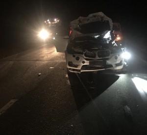 Животное скончалось от полученных травм. Также в аварии пострадала 32-летняя пассажирка BMW.