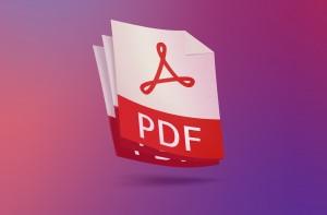 Как правило, на многих предприятиях и организациях, все самые важные документы хранятся в pdf файлах. Такие документы стали неотъемлемой частью работы многих офисов.