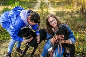 4 волонтёра из Самарской области вышли в финал Всероссийского конкурса «Доброволец России – 2020»