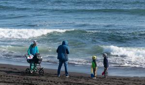 Российские ученые обнаружили крупные пятна токсичного планктона водоросли наКамчаткееще весной, они пришли из Японии.