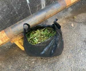 В Тольятти сотрудники ППС изъяли у местного жителя мешок марихуаны