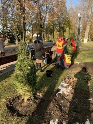 Активисты высадили на территории парка саженцы можжевельника, зеленой и голубой елей, туи, липы и красного дуба.