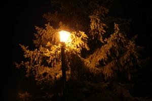 «ЕЭС-Гарант» модернизирует освещение в Октябрьске