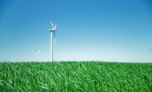 Последние годы Сбер перестраивает все свои процессы, минимизируя своё воздействие на окружающую среду.